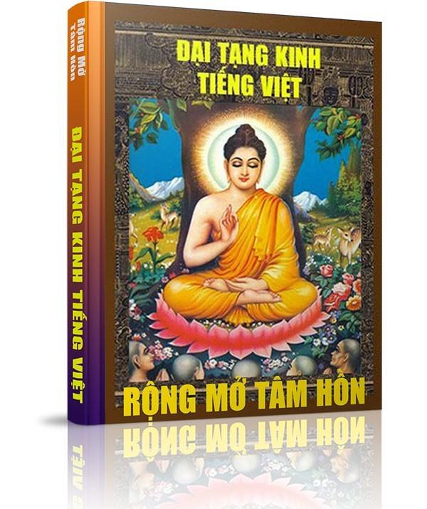 Những vấn đề liên quan đến Đại Tạng Kinh - Góp chút công sức cho Đại Tạng Kinh Việt Nam