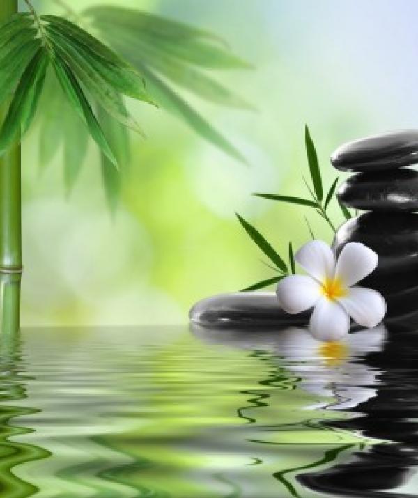 Mục đích của đạo Phật - Thơ Thiền đời Lý-Trần