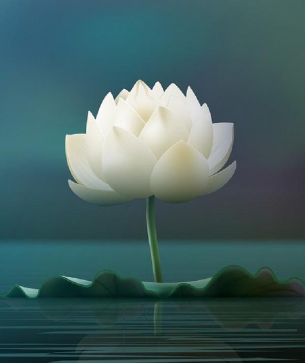 Văn học Phật giáo - Thất tình