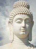 Đạo Phật hướng con người sống với trí tuệ