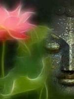Phật dạy về bốn hạng người