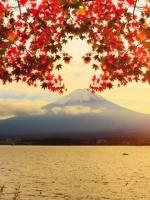 Nhật ký hành hương Nhật Bản