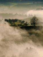 Dội trong sương mù