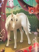 Con ngựa trắng xinh đẹp
