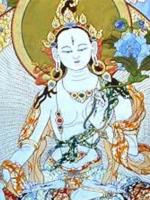 Tuyển dịch kinh điển Phật giáo Kim cang thừa