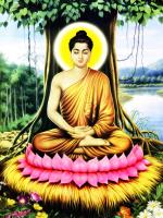 Mời Tham Gia Lớp Online Qua Zoom: Cuộc Đời Đức Phật Thích Ca