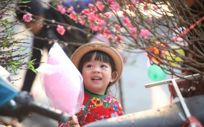 TET, a Vietnamese Tradition (Summary Translation by Phung Thi Hanh)