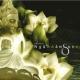 Ngàn Năm Sen Nở (Ca Khúc Phật GIáo)